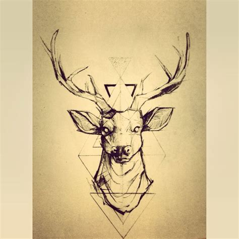 stag tattoo designs 17 best images about sweet tattoos on david