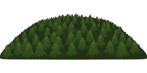 fotos de arboles en png vector gratis pinos 193 rboles bosques paisajes imagen