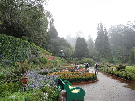 ooty botanical garden images ooty botanical garden images travel india ooty botanical