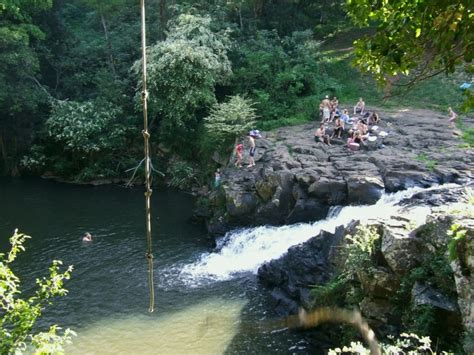 gardeners falls maleny 9 of the best coast swimming holes discover