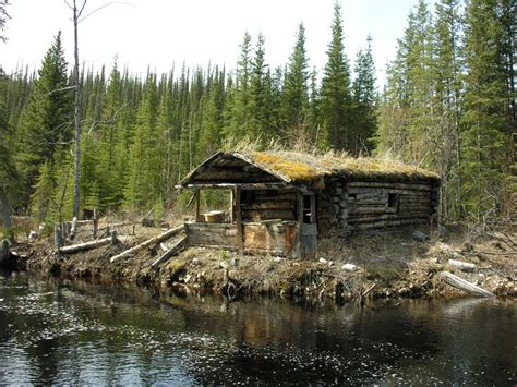 Mountain River Cabins by Cabin In The Woods Log Cabin Cabin Forest Log Cabin River Trees Woods
