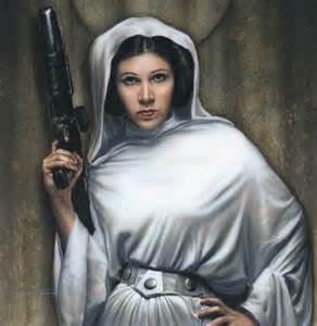 Us Senate Floor Plan leia princess leia organa solo skywalker photo 33724439