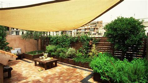 fiori in terrazza terrazza piante per terrazze piante per