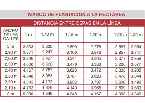 cuantos metros cuadrados tiene una hectarea c 243 mo calcular las plantas que entran por hect 225 rea