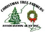 christmas tree growers association buffalo ny solvang tree farm