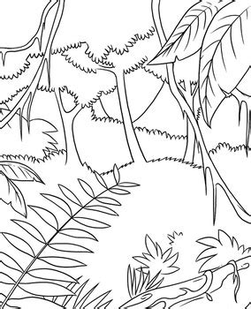 rainforest background colouring template    recess