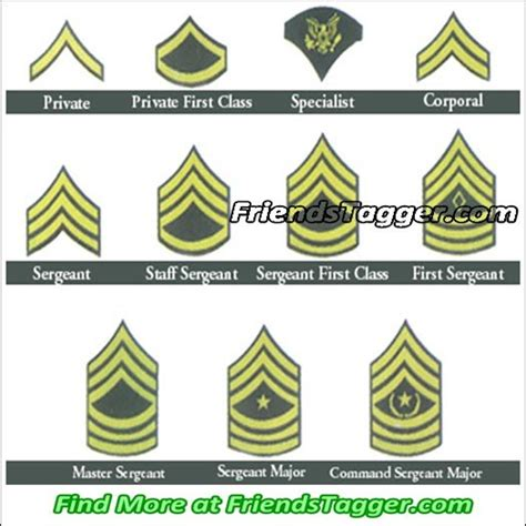 current us army rank structure the army enlisted ranks in the army