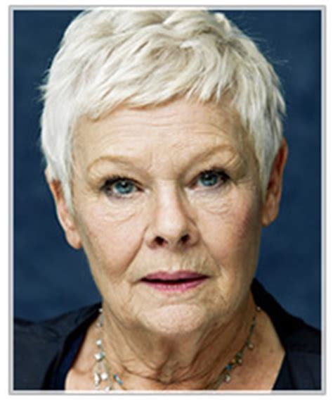 how to get judi dench hairstyle hairstyles for grey hair thehairstyler com