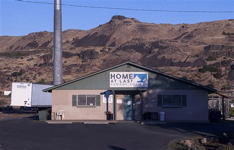 Home At Last The Dalles infected animal shelter to for cleaning the dalles