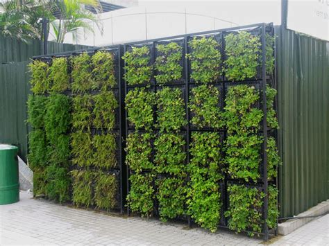 green garden walls green walls search green walls green walls gardens and yard design