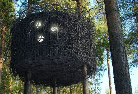tree hotel sweden tree hotel sweden