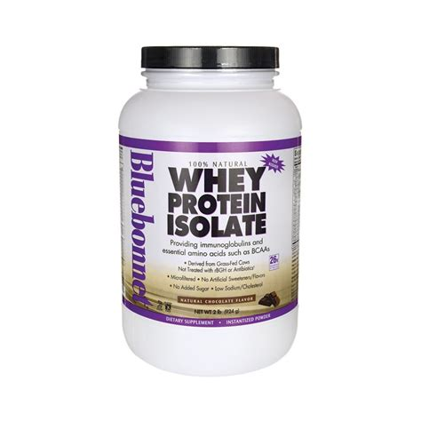 Whey Protein 2 Lbs whey protein isolate chocolate 2 lbs 924 grams pwdr