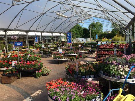 garden centres  ireland fernhill garden centre