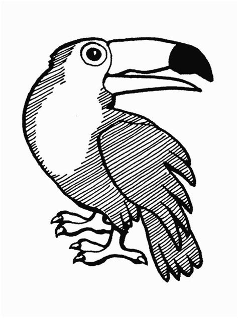 coloring pages of birds in the rainforest 111 best jungle safari vbs images on pinterest