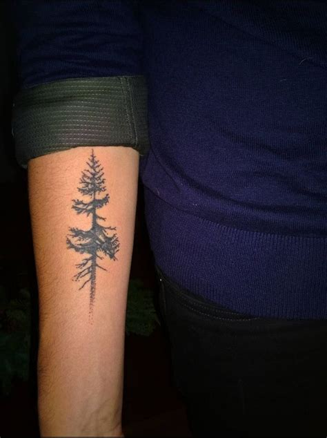 fir tree tattoo 1000 ideas about simple tree on tree