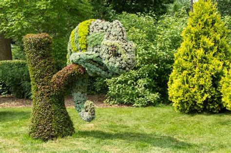 Amazing garden ideas decorazilla design blog