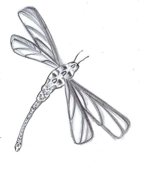 firefly tattoos designs dragonfly tattoos designs ideas and meaning tattoos for you