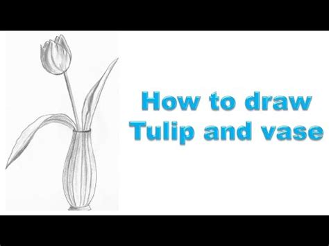 how to draw a tulip and vase
