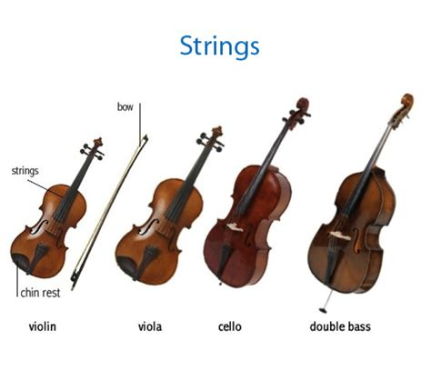 string section instruments unit 2 classroom lesson the instruments of the orchestra