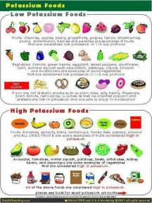 25 best ideas about renal diet on pinterest dialysis diet kidney friendly diet and diabetic