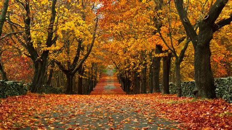 video 28 small towns with the most beautiful fall foliage