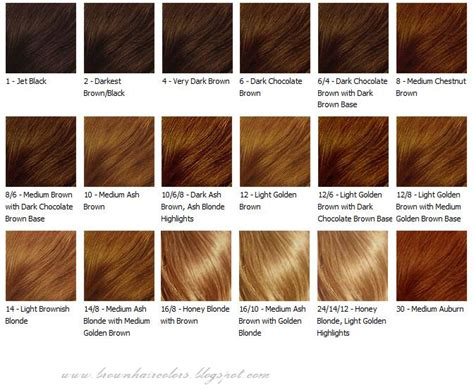 honey hair color chart chocolate brown highlight lowlight hair color ideas