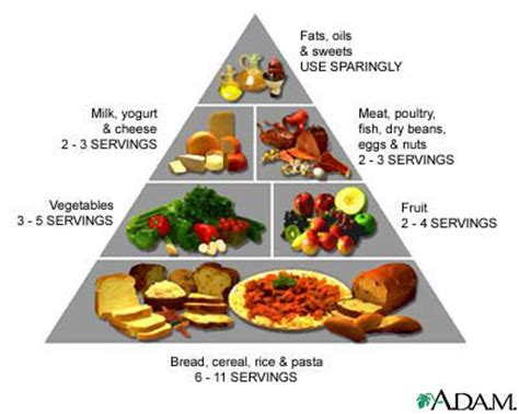recommended food best diet foods of all time