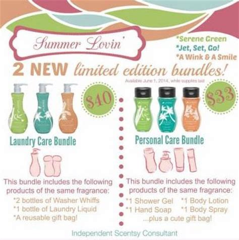 Great Handbag Care Product Lovin My Bags Antibacterial Leather Cleaner by Scentsy Summer Lovin Bundles Got Your Covered For Your