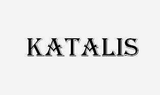 biokatalis adalah pengertian katalis dan jenis katalis excation