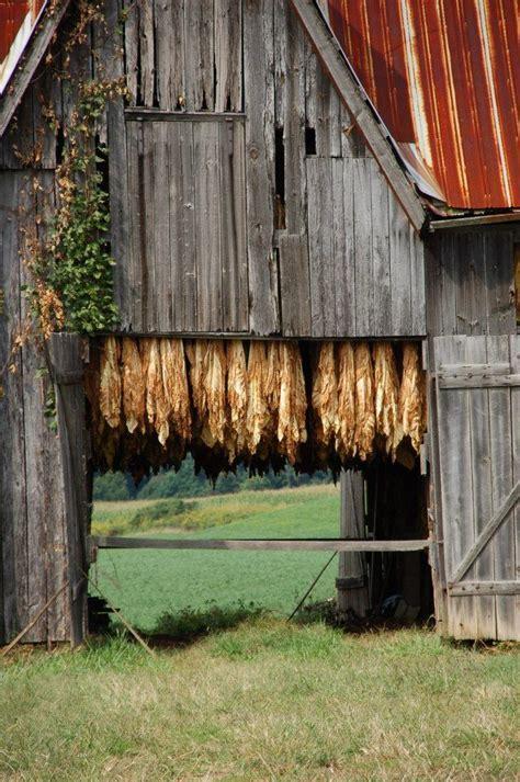 tobacco barn log home living pinterest