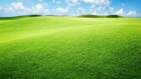green landscaping green landscape wallpaper 1920x1080 53370