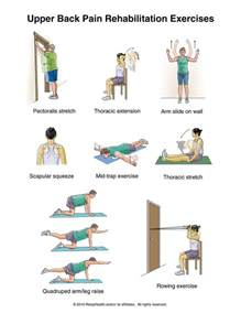 best 25 back exercises ideas on