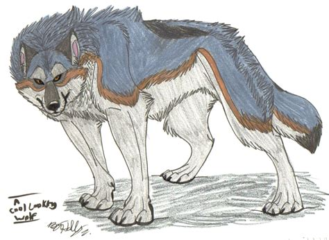 cool looking cool drawings of wolves www imgkid com the image kid