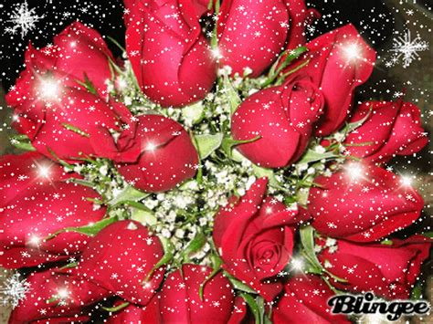 imagenes de rosas brillantes con movimiento fotos animadas rosas brillantes para compartir 119769964