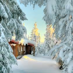 Building A Small Cabin In The Woods Snow Covered Small Cabin Cabin Living
