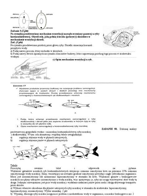 test biologia test biologia strunowce maturalne