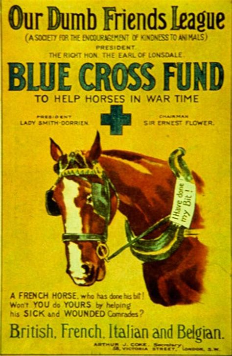 liberty dogs of world war ii books the 9 million unsung heroes of ww1 dogs horses and