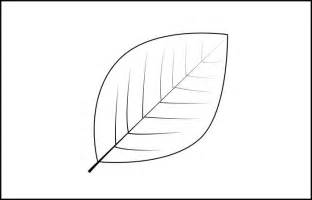 Leaf Template by Leaf Template Printable Leaf Templates Free Premium