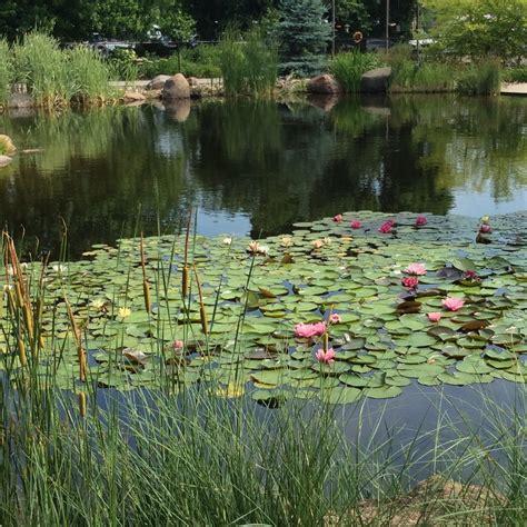 cedar river garden center palo ia plant nursery