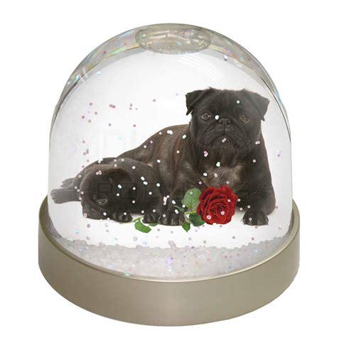 pug snow globe black pug dogs with snow dome globe waterball animal gift ebay