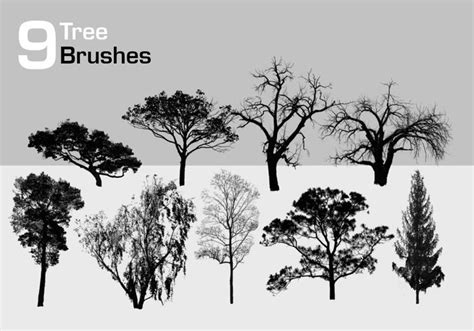 tree pattern brush photoshop 9 high resolution tree brushes free photoshop brushes at