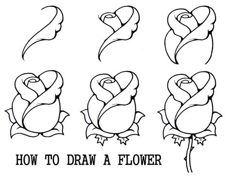 how to draw for beginners free the images collection of for easy drawing ideas animals