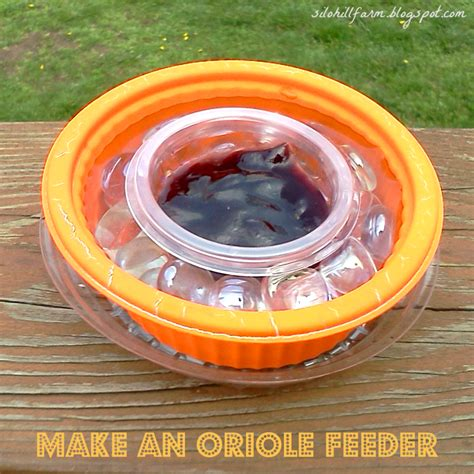 silo hill farm make an easy oriole feeder