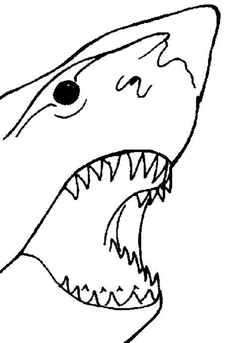 imagenes para colorear tiburon dibujos de tiburones dibujos