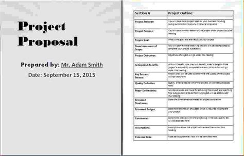 8 project proposal template word timeline template