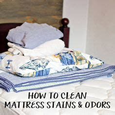 Cat Smell Out Of Mattress by How To Easily Remove Stain And Smell From A