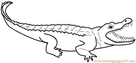 alligator mouth coloring page alligators coloring page free alligator coloring pages