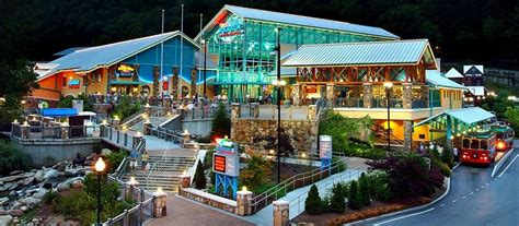 country springs hotel lights coupon ripley s aquarium coupon discount tickets promo code
