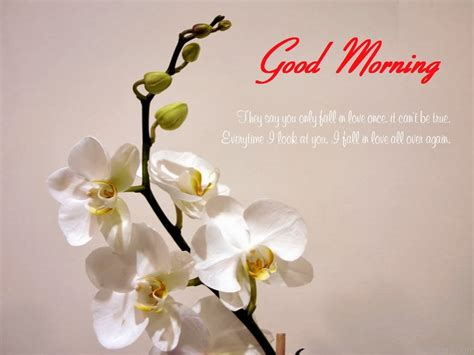 good morning wishes  friend wishes  pictures  guy