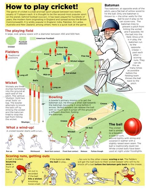 Or How To Play How To Play Cricket